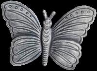 Butterfly - #011
