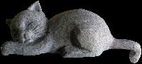 Sleeping Cat - #023