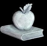 Teacher - #001